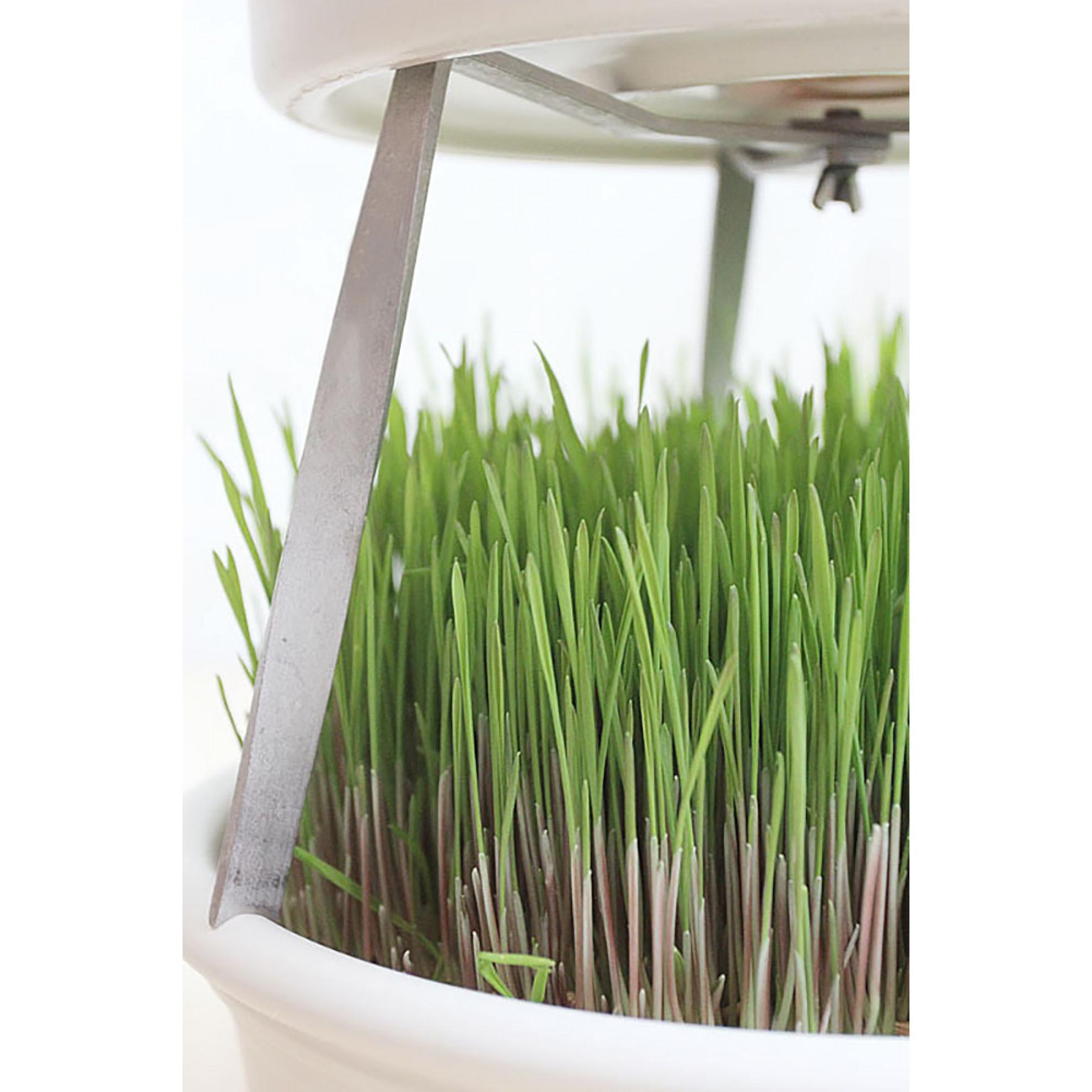 Stacking Aid For Eschenfelder Wheatgrass Sieve