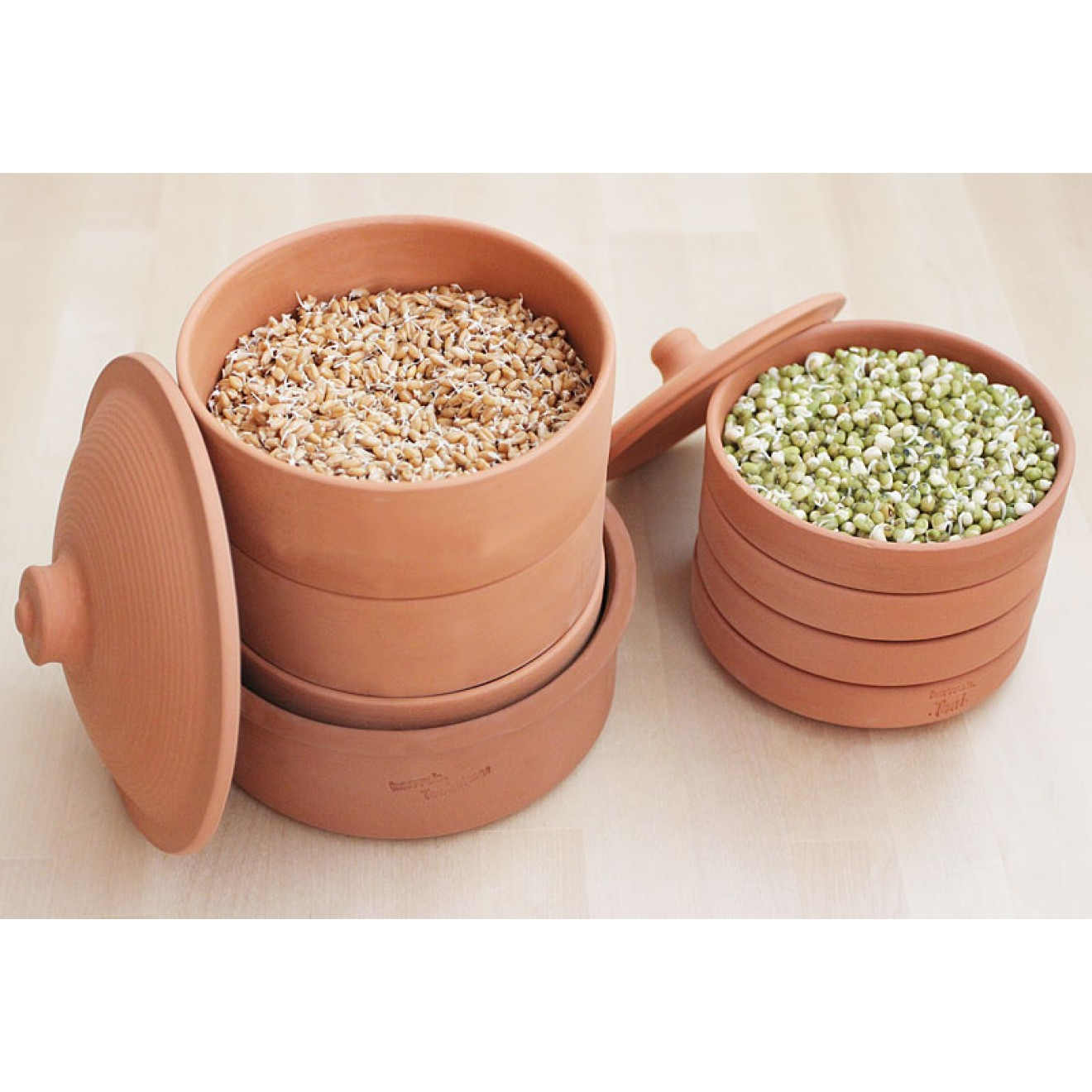hawos Clay sprouting pot